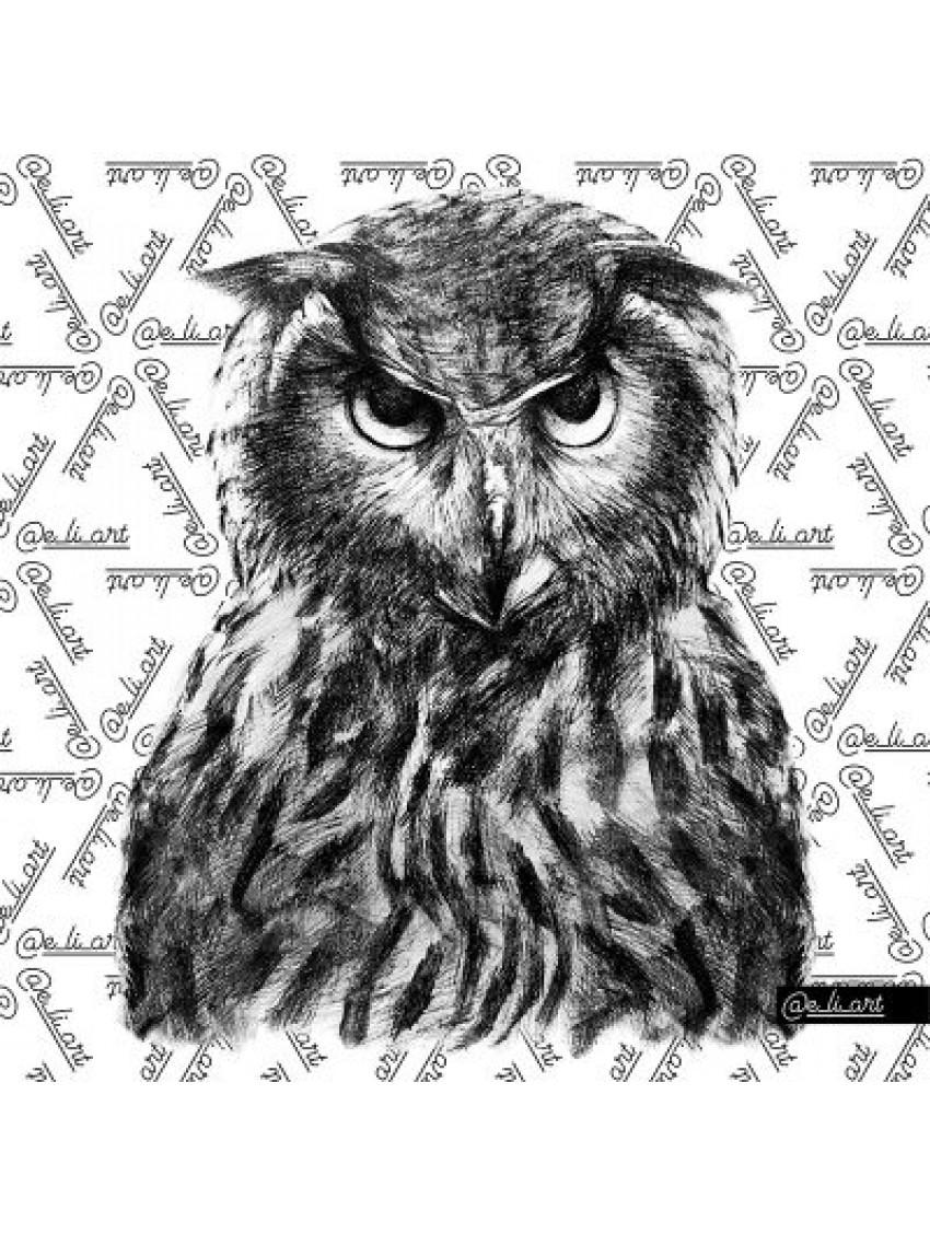 Μπλούζα S-OWL