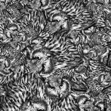 Φουλάρι OWL